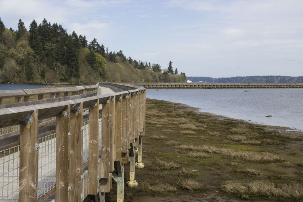 IMG_2281-nisqually-boardwalk