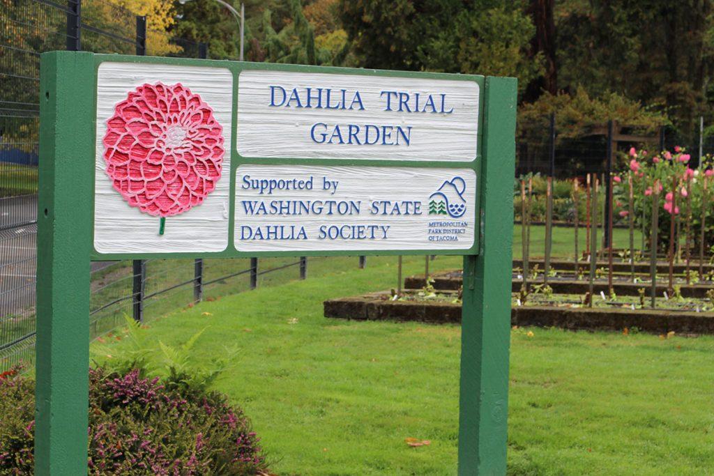 Dahlia Trial Garden Point Defiance Tacoma WA