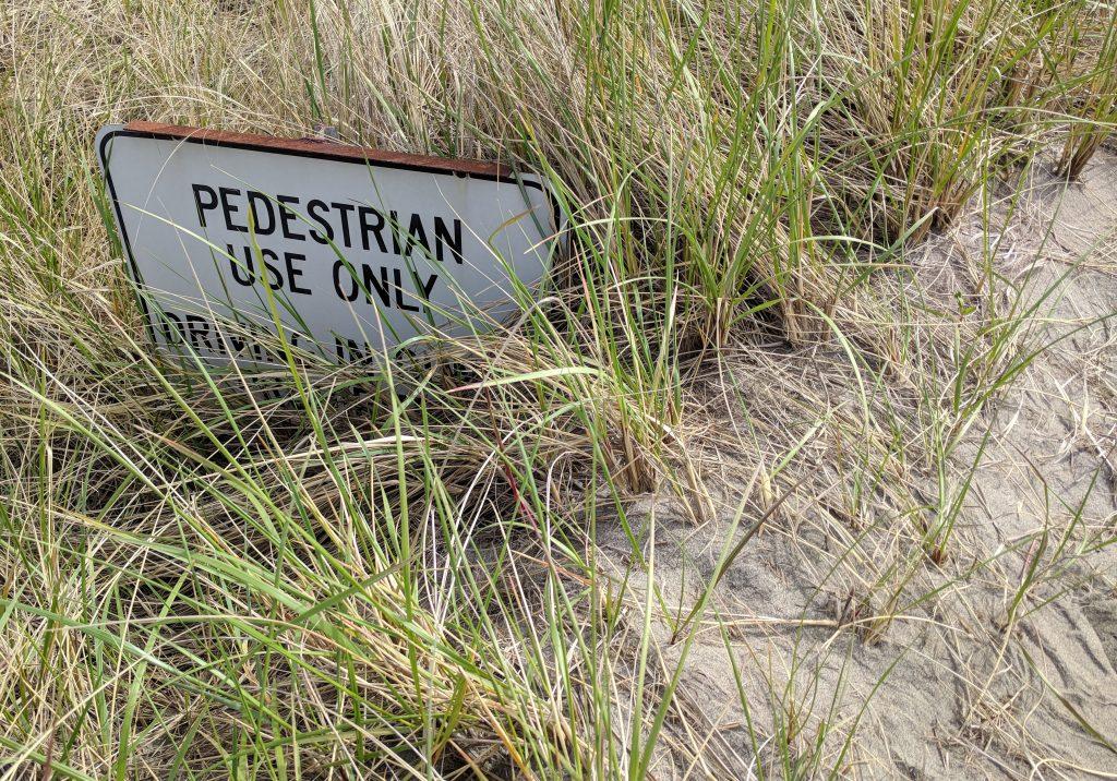Pedestrian Sign Sinking